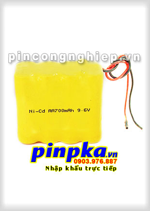 Pin đèn Exit Ni-CD 9,6v AA 700mAh